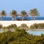 Tourico Vacations Reviews Sir Bani Yas Island
